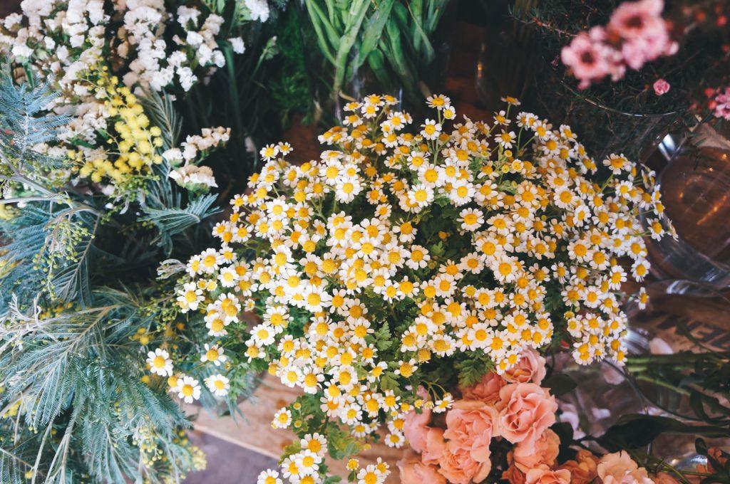 Clementine Florist-8