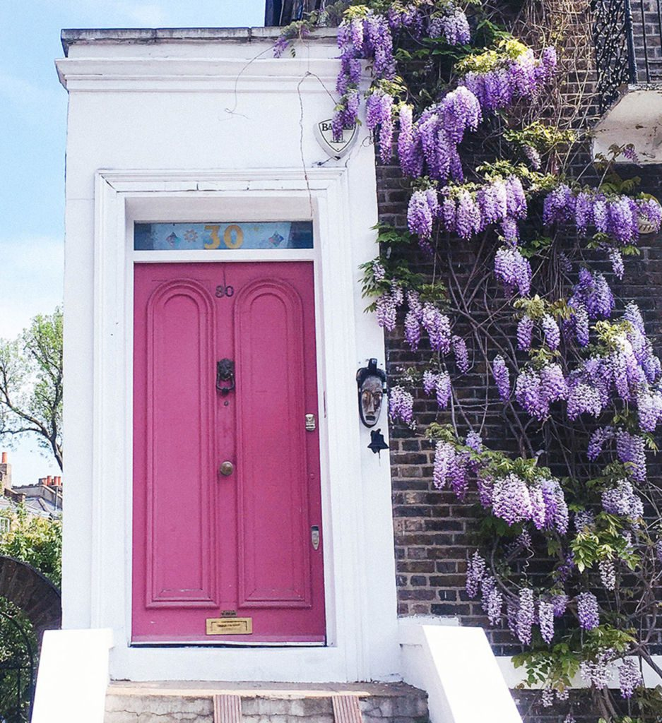 Photos of spring in London including wisteria hysteria, the time of year when wisteria covers the city in a lavender canopy.