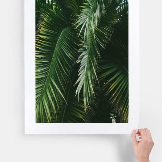 large-format-print-main01-tropical-leaves_2x